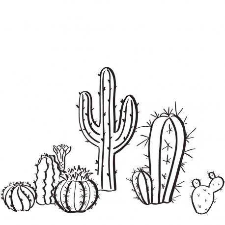 CACTUS Stickers- StickHappy.com