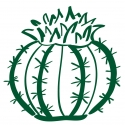 Cactus rond en adhésifs pour mur - StickHappy