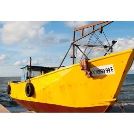 Immatriculation de bateau